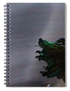 Swimming Down Spiral Notebook