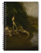 Swimming Hole Sketch Spiral Notebook