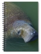 Swimming Manatee Spiral Notebook