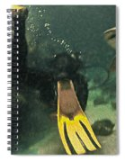 Swimming With The Sharks Spiral Notebook