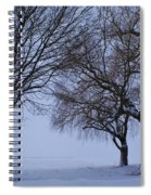 Swing In Winter Spiral Notebook