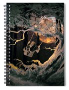 Swinging Through The Forest By Moonlight Spiral Notebook