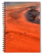 Swirling Algae Mats Spiral Notebook