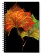 Swirling In The Wind Spiral Notebook