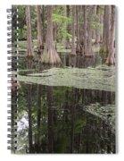 Swirls In The Swamp Spiral Notebook
