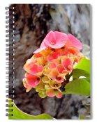 Swirls Of Pink Spiral Notebook