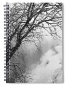 Swiss  Snow Fall Spiral Notebook