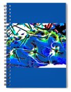 Swords Spiral Notebook