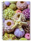 Syarfish And Sea Urchins Spiral Notebook