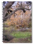 Sycamore Grove Fall Spiral Notebook