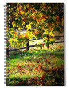 Sycamore Grove Fence 2 Spiral Notebook