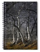 Sycamore Grove Spiral Notebook