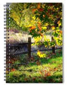 Sycamore Grove Series 11 Spiral Notebook