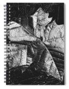 Sycamore Leaf Digital Spiral Notebook