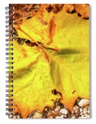 Sycamore Leaf  In Fall Spiral Notebook