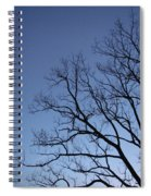 Sycamore Silhouette Spiral Notebook