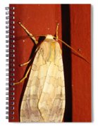 Sycamore Tussock Moth Spiral Notebook