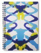 Symmetry 23 Spiral Notebook
