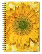 Symphony In Yellow Spiral Notebook