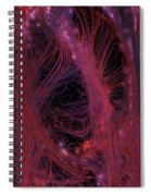 Synapsis Spiral Notebook