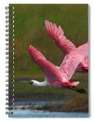 Synchrony Spiral Notebook