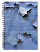 Synthesis-2 Spiral Notebook