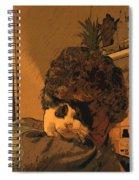 T E G Spiral Notebook