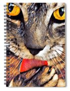 Tabby Cat Licking Paw Spiral Notebook