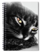 Tabby Cat Selective Color Spiral Notebook