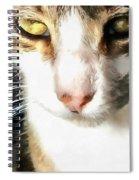 Tabby Spiral Notebook