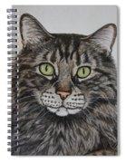 Tabby-lil' Bit Spiral Notebook