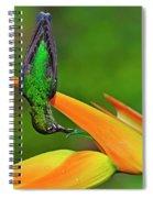 Table Manners Spiral Notebook
