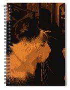 Taddeo B Spiral Notebook