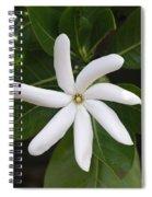 Tahiti Tiare 1 Spiral Notebook