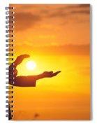 Tai Chi At Sunset Spiral Notebook