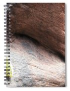 Tail Of The Cactus Spiral Notebook
