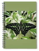 Tailed Jay Butterfly #2 Spiral Notebook