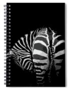 Take A Bow Spiral Notebook