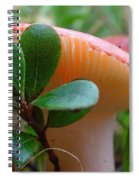 Take A Moment...be Mindful. Spiral Notebook
