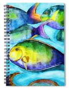 Take Care Of The Fish Spiral Notebook