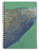 Taking A Breath Spiral Notebook
