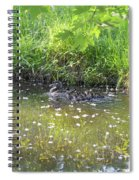 Taking A Stroll With Mom Troughs Floral Reflections Spiral Notebook