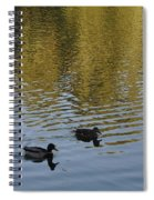 Taking A Walk Spiral Notebook