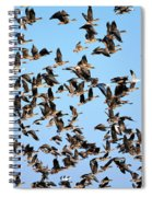 Taking Flight 2 Spiral Notebook