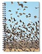 Taking Flight 3 Spiral Notebook