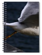 Taking Flight Spiral Notebook