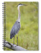 Taking In The Scenery Spiral Notebook