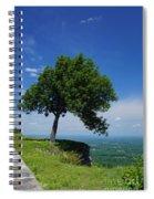 Taking Piont Spiral Notebook