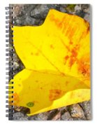 Tale Of A Season Spiral Notebook