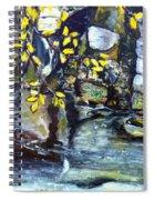 Talir Spiral Notebook